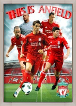 Liverpool - players 2010 3D Plakat