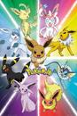 Pokemon - Eevee Evolution